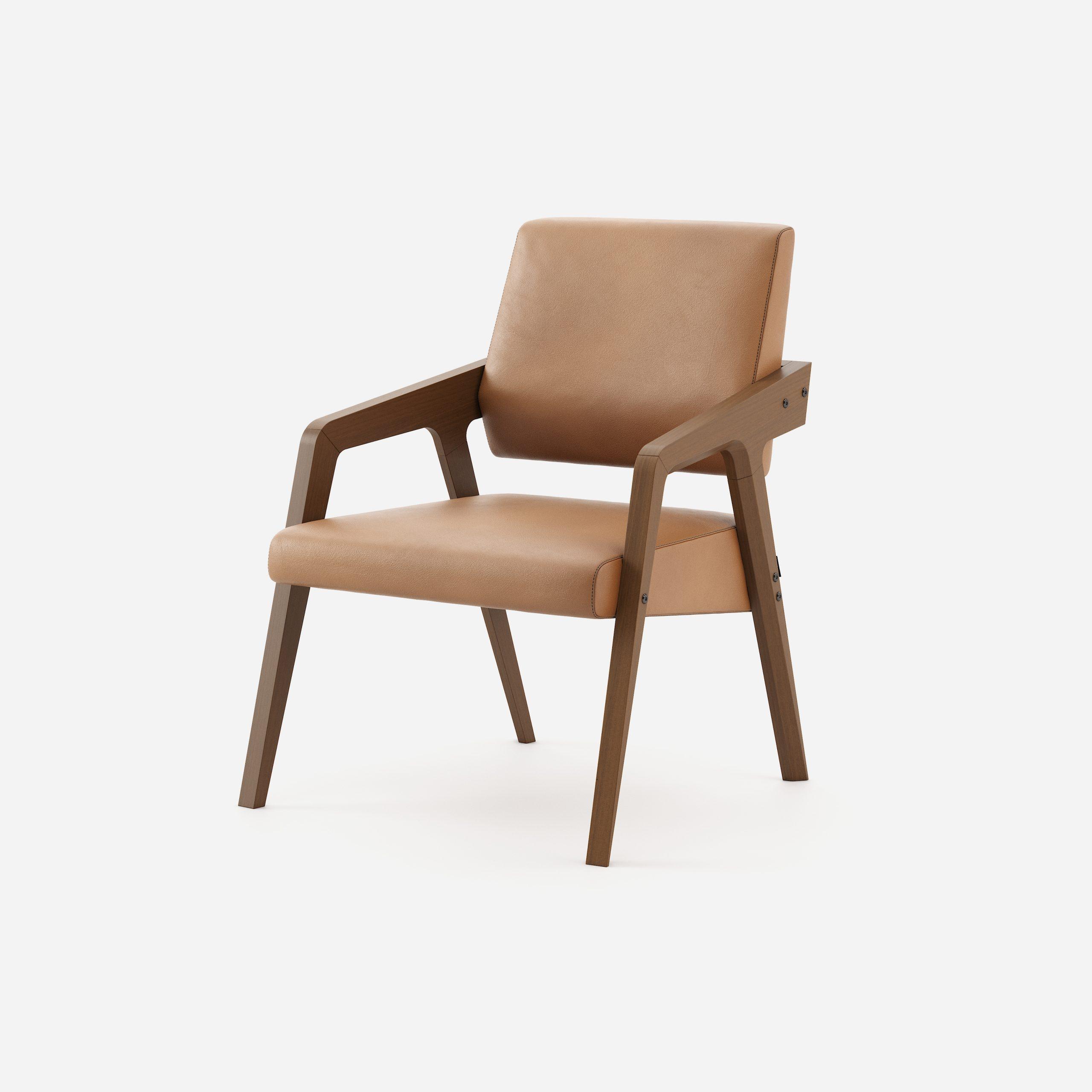 Modernus krėsliukas Joan