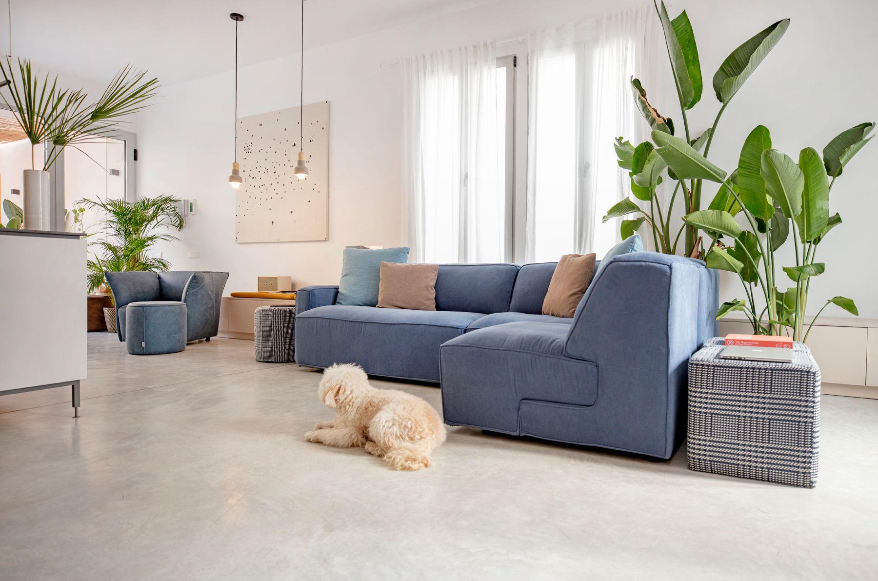 Modernūs minkšti svetainės baldai sofa Soft